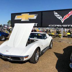 Corvette hood 2